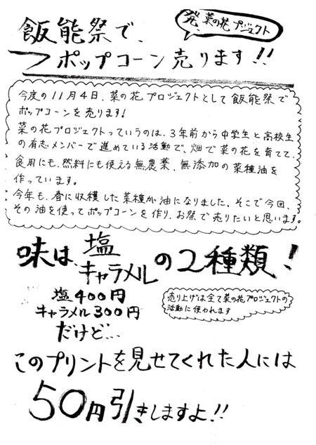 20071104nanohana000_2