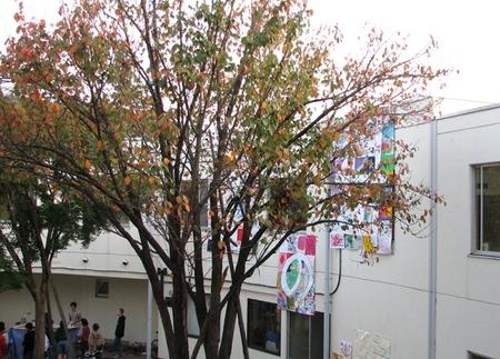 20081018hyogensai146