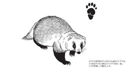 20090501moriguchi0000