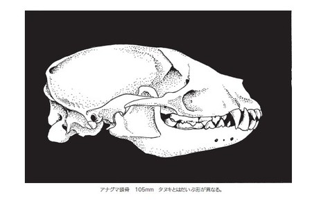 20090501moriguchi0001