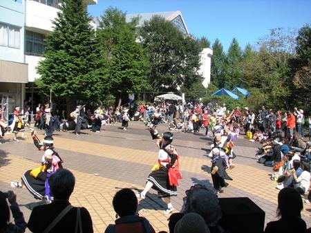 20091011jiyunomori25syune046
