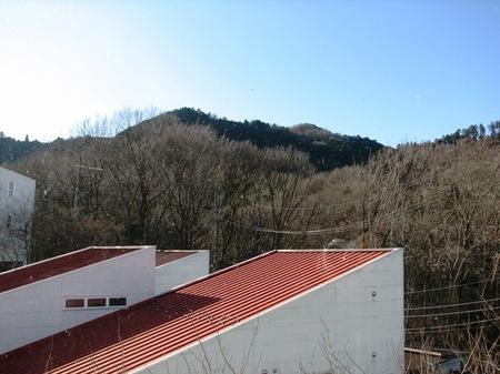 20100116jimori025