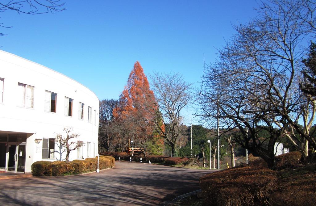 20111211jimori3131