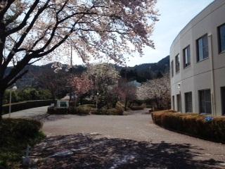 Jimori2012041519