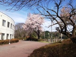 Jimori2012041521