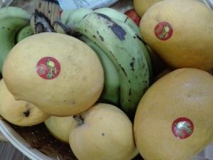 Bananamangoshwepuzun01